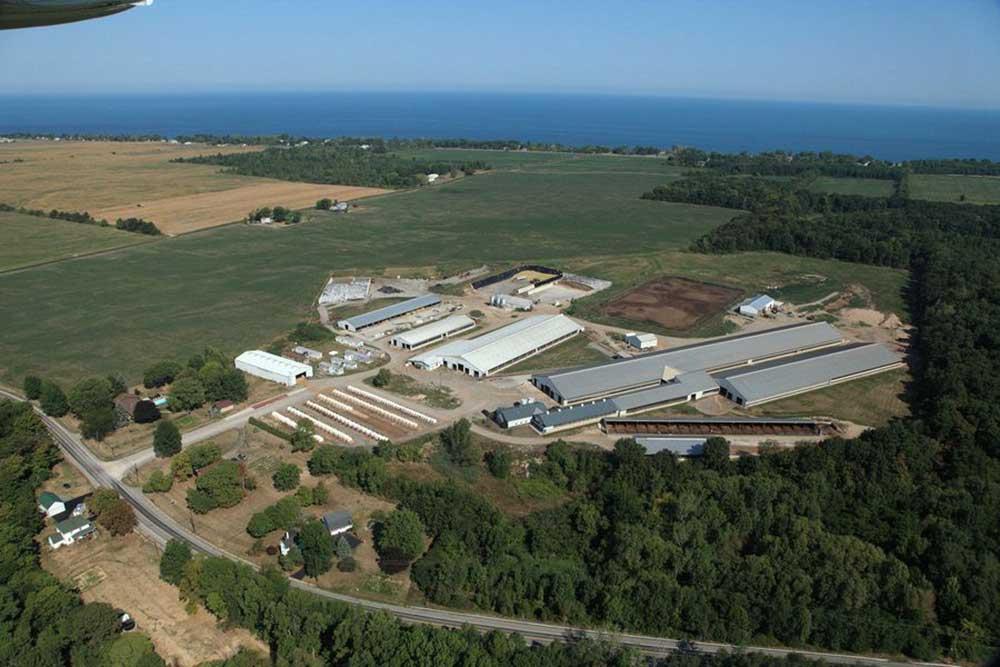 Lakeshore Farm